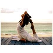 Обучение по курсу  «Йога – основные приемы» в центре «Союз»