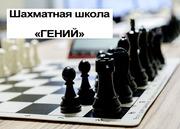 Обучение шахматам по скайпу. Цена урока от 700 руб/час